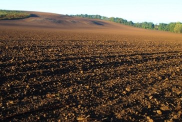 Wspólnie dbajmy o naszą glebę!