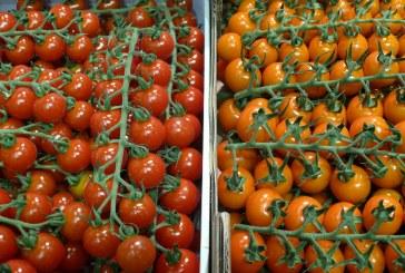 Rosjanie nie chcą tureckich pomidorów