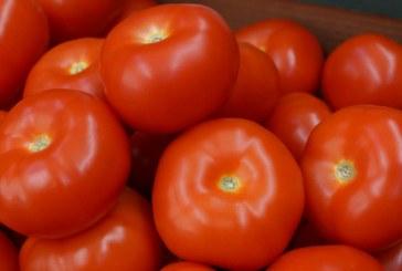 Jest porozumienie Turcja-Rosja, handlu pomidorami nie będzie