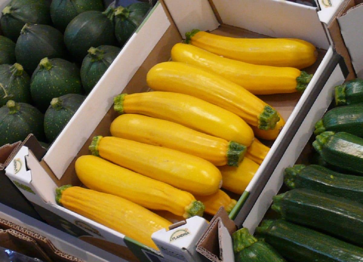 Żółta cukini. Rośnie produkcja i eksport z Hiszpanii