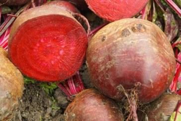 Prądem w owoce i warzywa