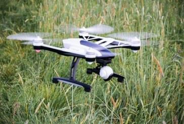Dron bada zmiany w okresach wegetacji na polach Lubelszczyzny