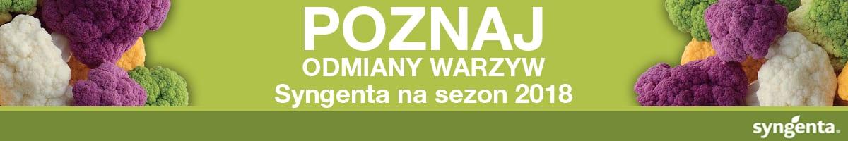 1200x200_syngenta_poznajwarzywa