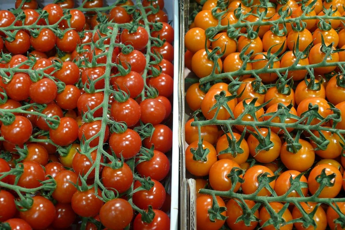 Holendrzy ocenili sytuację na rynku warzyw szklarniowych