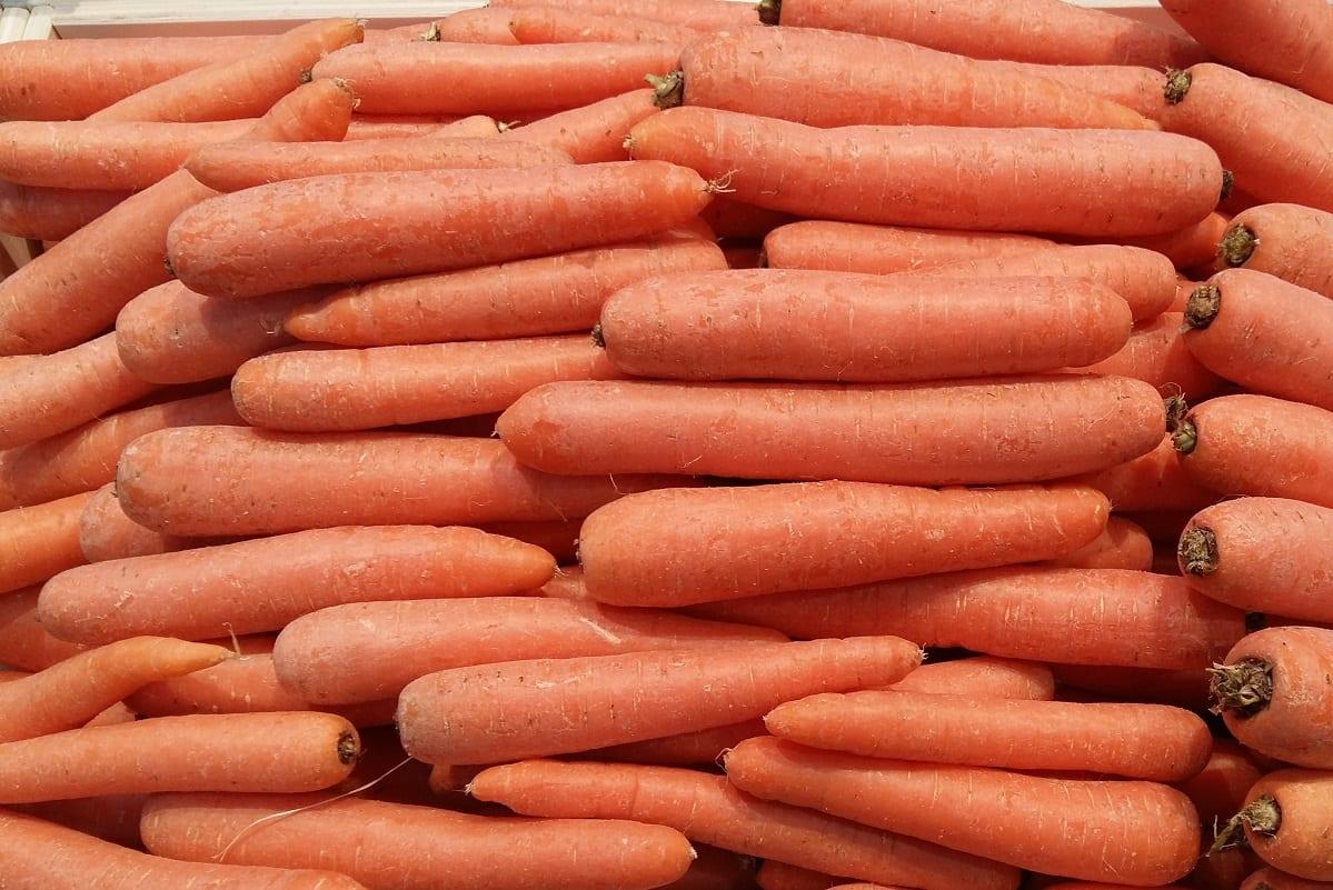 Ceny warzyw korzeniowych w Małopolsce