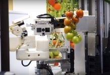 Opracowano robota do zbioru pomidorów