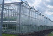 Za dwa lata – 1,5 miliona ton szklarniowych warzyw