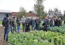 Pokaz warzyw kapustnych w Orzeżynie