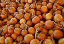 Ceny warzyw w Broniszach dużo wyższe niż przed rokiem