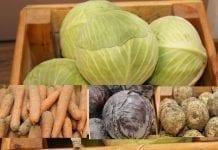 O warzywach gruntowych w Kórniku