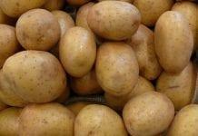 Czyje ziemniaki zjedzą Rosjanie?