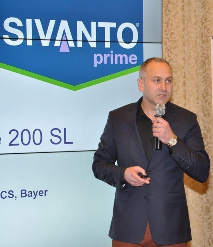 Warzywnicza oferta firmy Bayer na 2019