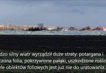 Trud i zmagania po wichurze w Małopolsce. FILM.