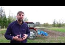 Komunikat warzywniczy TIMAC – początek wiosny i rozwój roślin