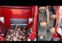 Precyzyjne sadzenie ziemniaków z nową sadzarką Grimme