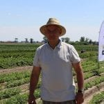 Radosław Suchorzewski Grower Manager Fruit/Vegetables/Potatoes Bayer - fot. A. Andrzejewska