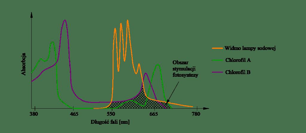 Rysunek 1. Widmo fotosyntezy roślin (Chlorofil A, Chlorofil B) oraz widmo promieniowania lamp sodowych