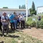 Omówienie programu ochrony ziemnika Syngenta