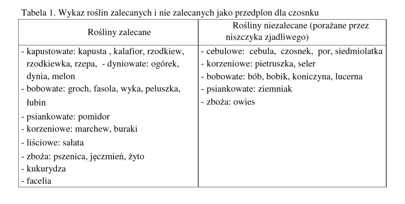 Tabela 1. Wykaz roślin zalecanych i nie zalecanych jako przedplon dla czosnku