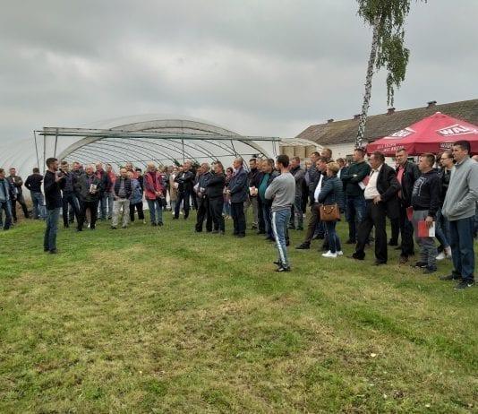 Spotkanie paprykowe w miejscowości Dęba