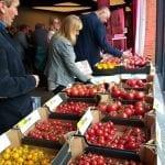 Konferencja pomidorowa w Pabianicach