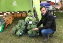 Brokułowe manewry polowe