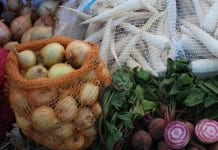 Zbiory warzyw gruntowych niższe o 6%