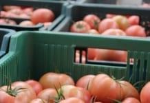 Ceny warzyw wyprzedzają inflację