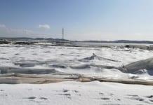 W Almerii 1000 ha upraw pod osłonami spustoszyła zimowa burza