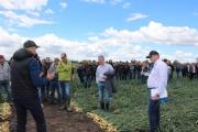 Prezentacja odmian cebuli