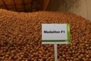 Medaillon F1